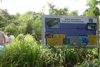 カメの産卵場所を知らせるサインが掲示されている